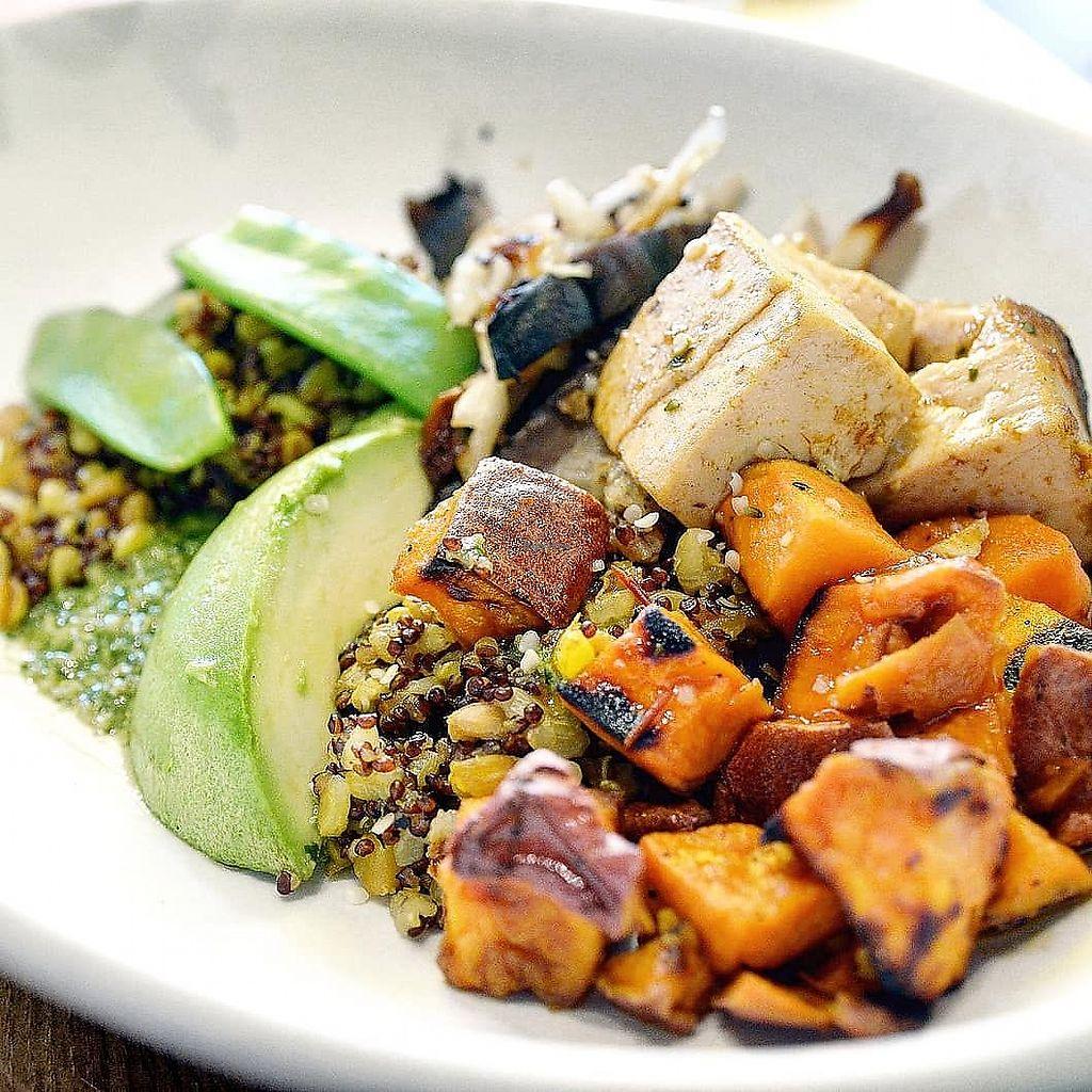 Grain Bowl at True Food Kitchen - La Jolla Village in San Diego