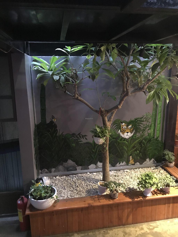 Casa Bonita - Cat Ba | Review