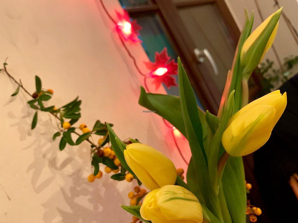 Botanica - Magdeburg Restaurant - HappyCow