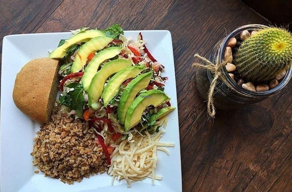 Avacado Salad At Leonor S Mexican Vegetarian Restaurant In Studio City