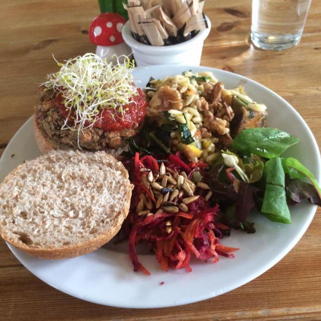 The Veg Box Cafe Canterbury Restaurant Happycow
