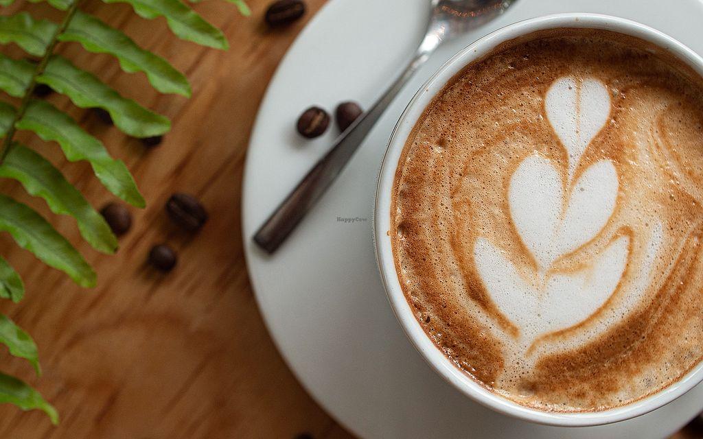 Local Coffee Shop Puerto Morelos Other Happycow