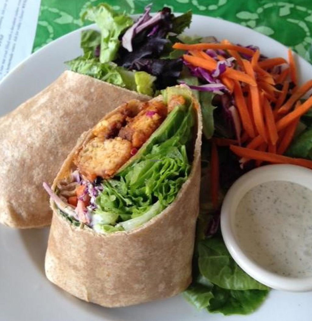 Buffalo Solr Wrap Yummy At Good Karma Cafe In Red Bank