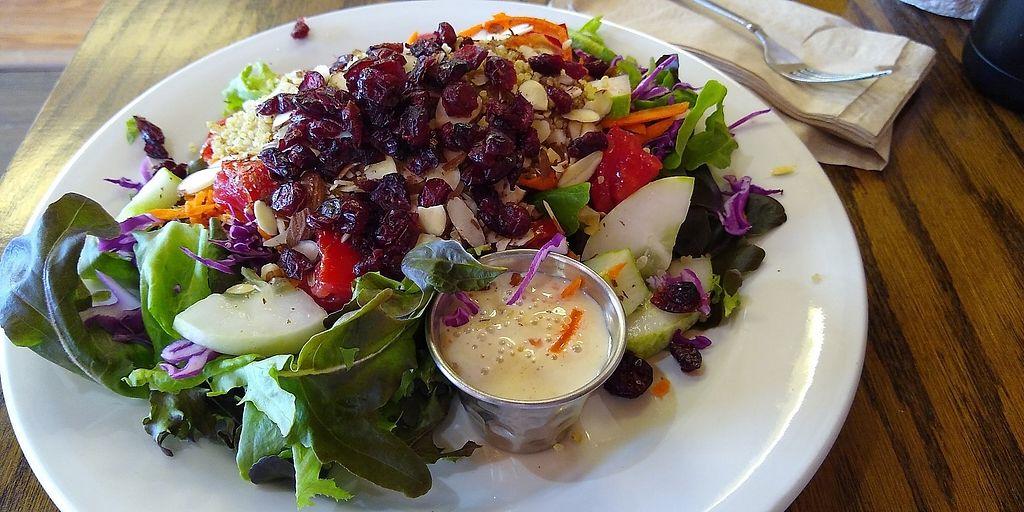 Wildflower Earthly Vegan Fare Millville New Jersey Restaurant Happycow