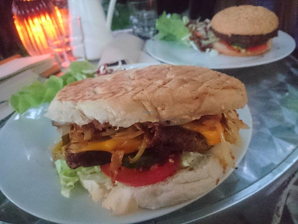 Hamburger str 31 dresden