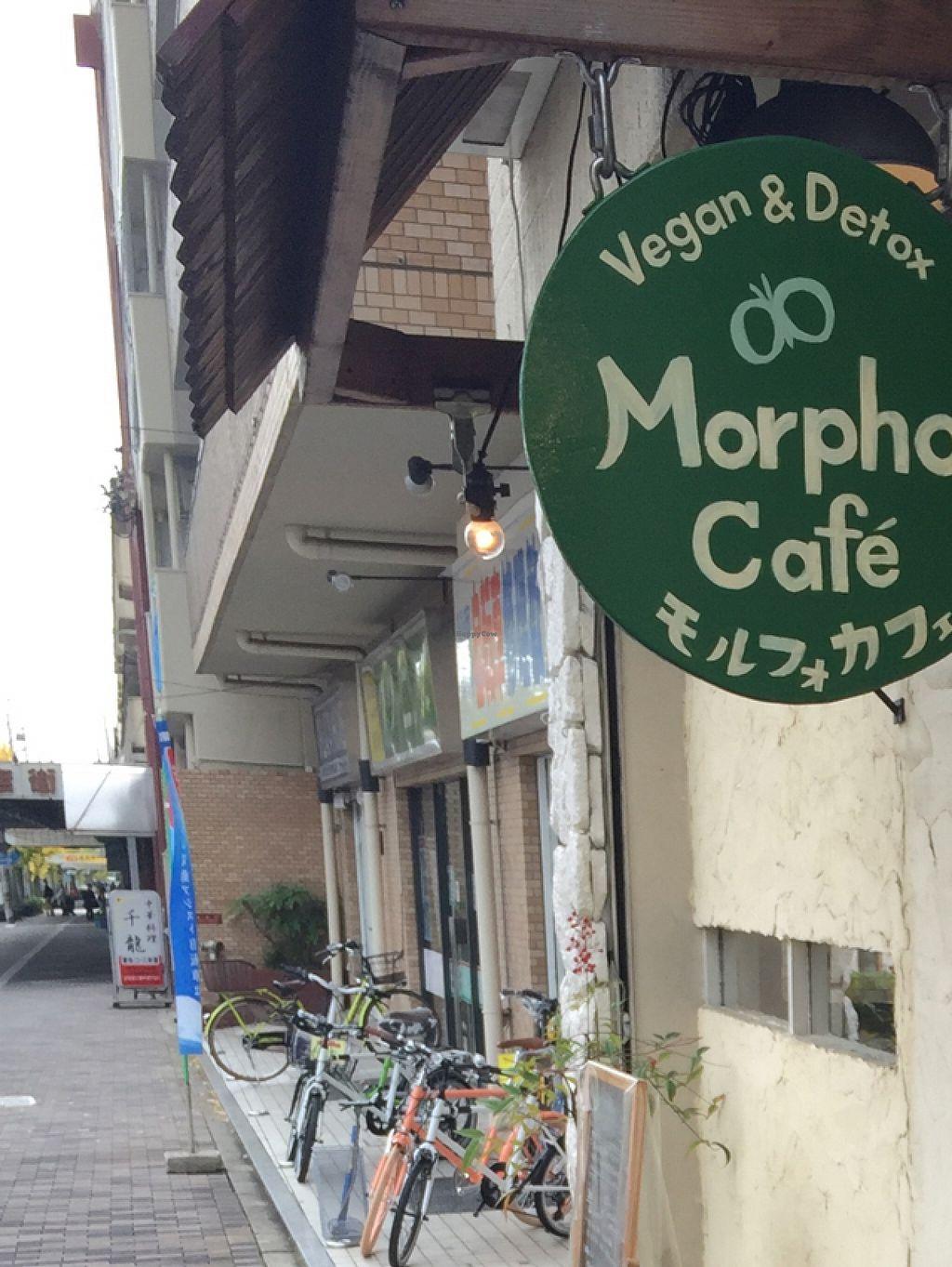 Morpho Cafe - Kyoto Restaurant - HappyCow