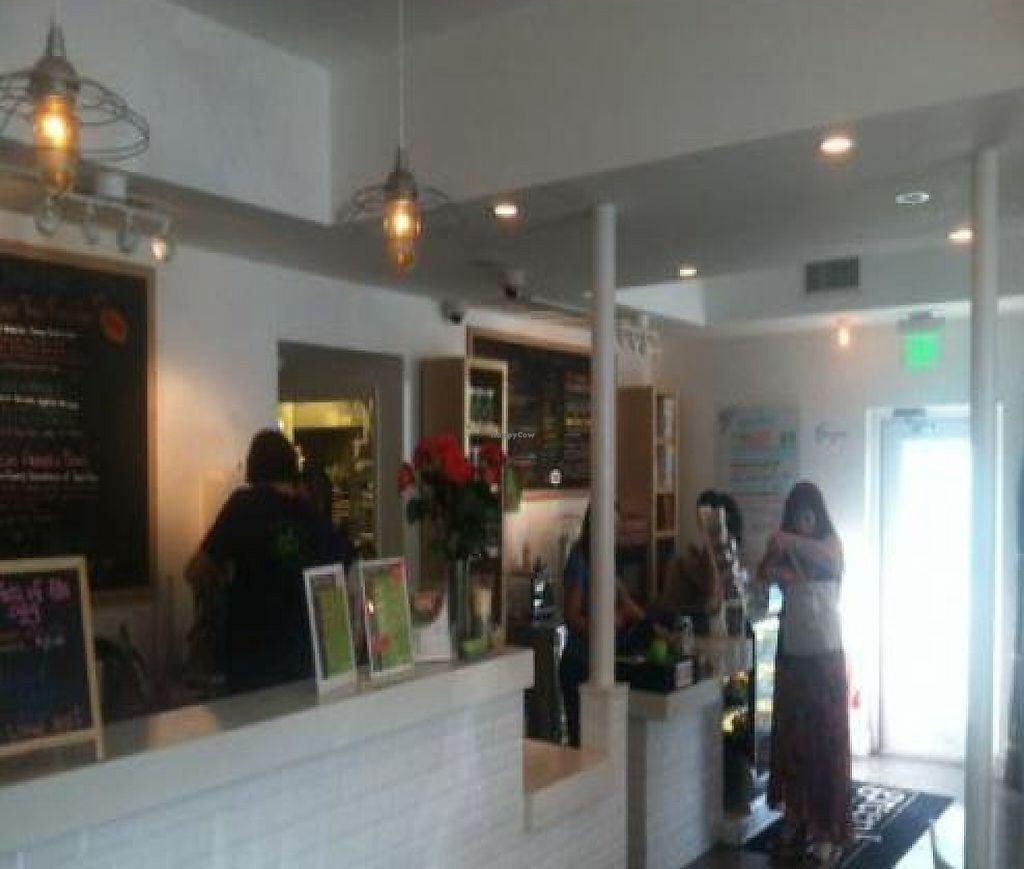 Green Kitchen Vegan Cafe: Fort Lauderdale Florida Restaurant