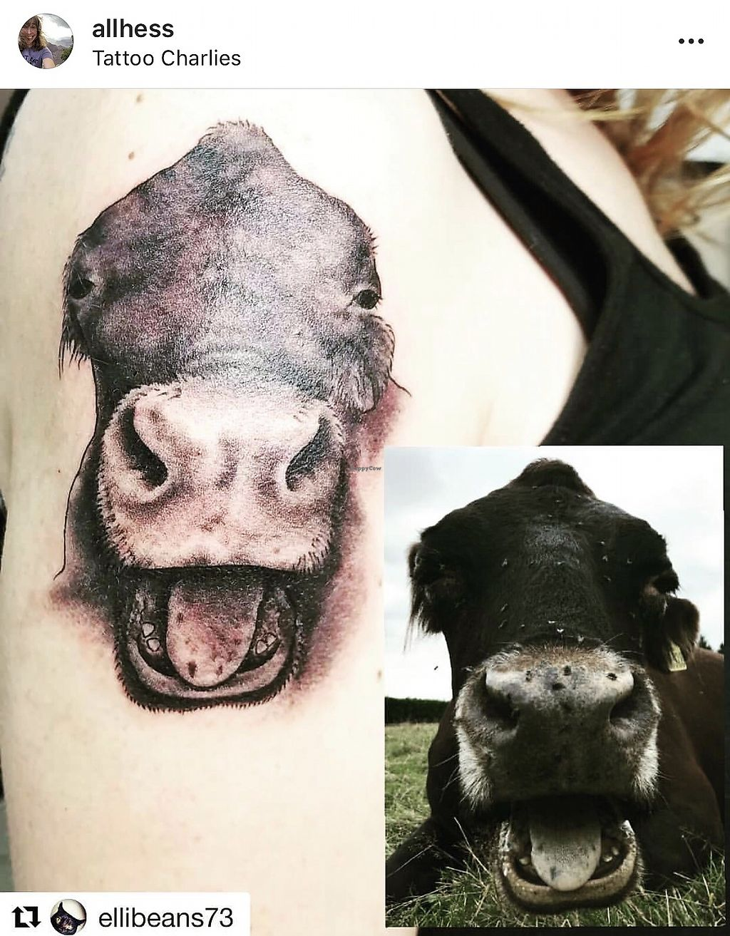 041ab327e My second tattoo with Elli - of my cow friend, Rosie. She lives at