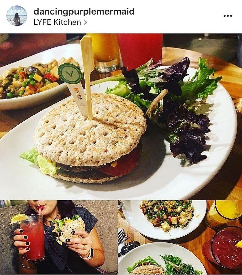 Lyfe Kitchen Black Bean Burger Calories – Wow Blog