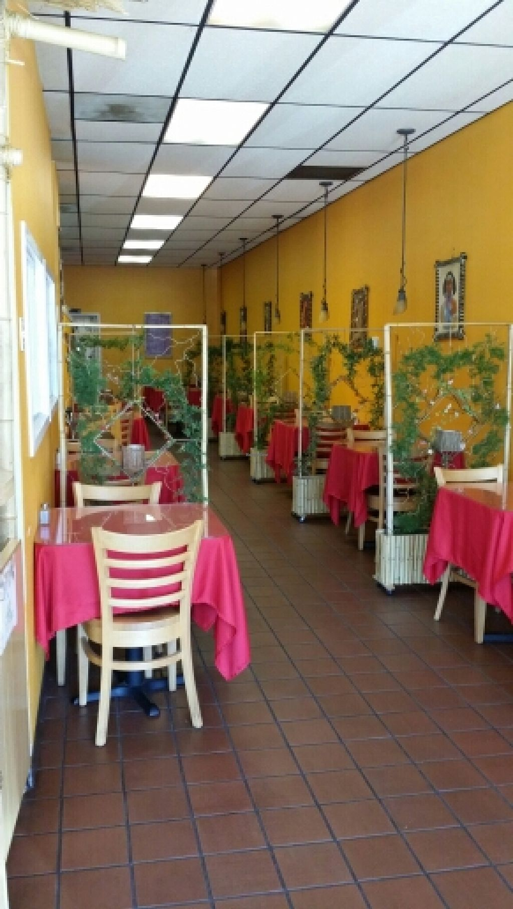This is the adorable restaurant at abyssinia restaurant in santa rosa