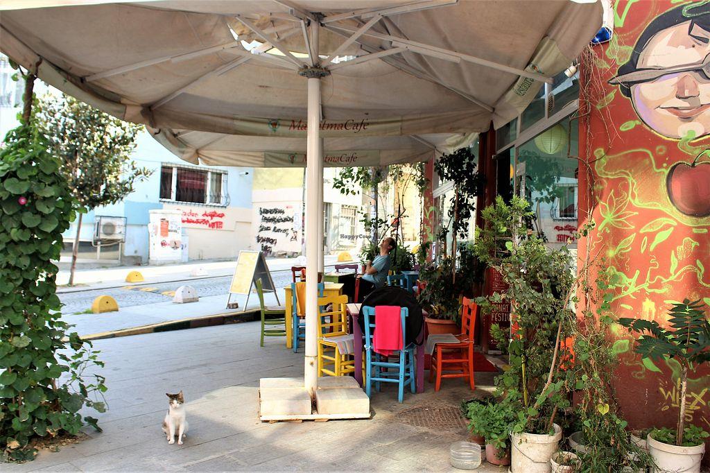 Mahatma Cafe Istanbul Restaurant Happycow