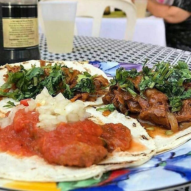 la cocina de sofia - veracruz restaurant - happycow