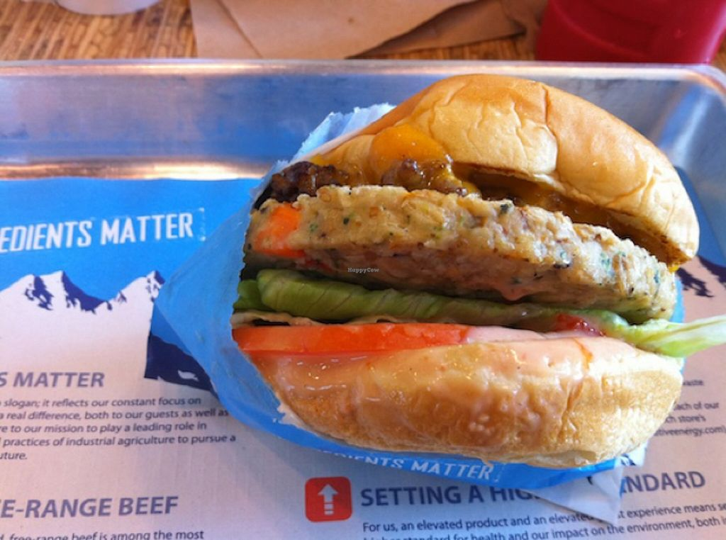 Image result for elevation burger veggie burger