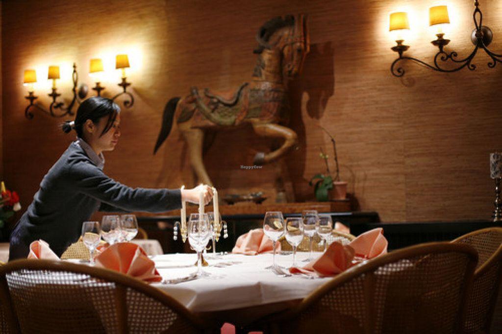 Joy S Villa Merksem Restaurant Happycow