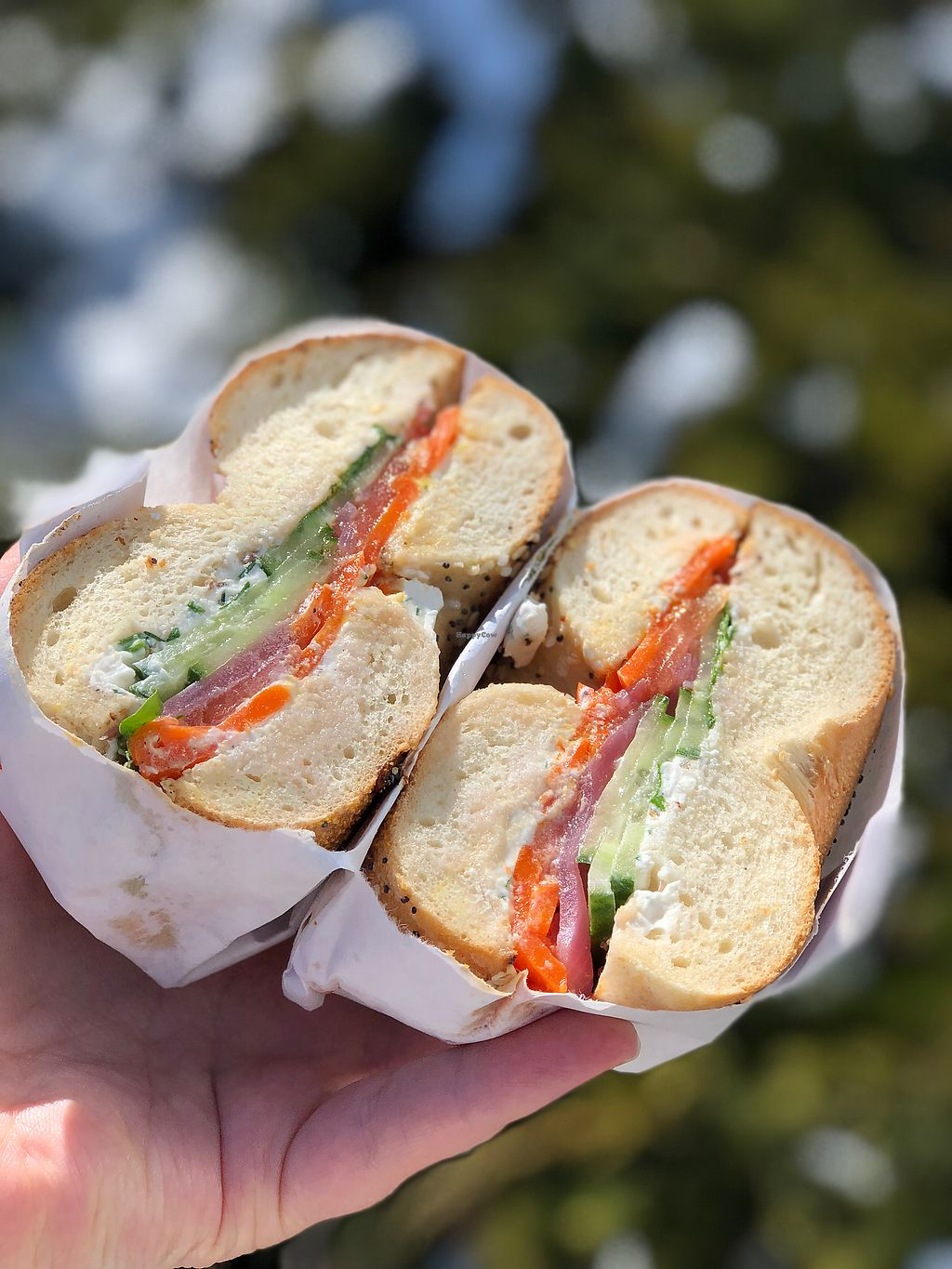 best bagels in madison wi