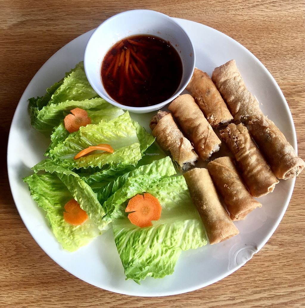 Christy Egg Rolls At 208 Pho Vegan In Boise