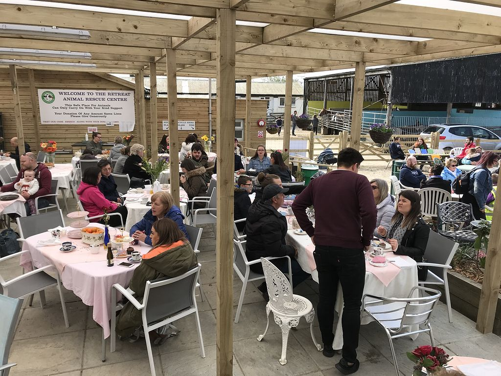 The Retreat Animal Rescue Farm Sanctuary and Cafe - Ashford