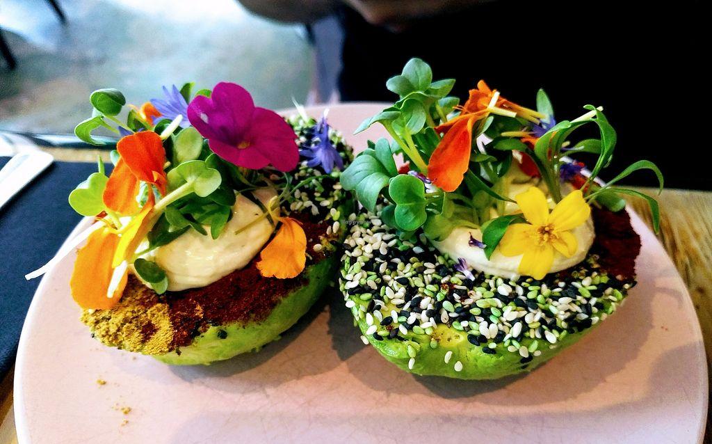 Image result for the avocado show