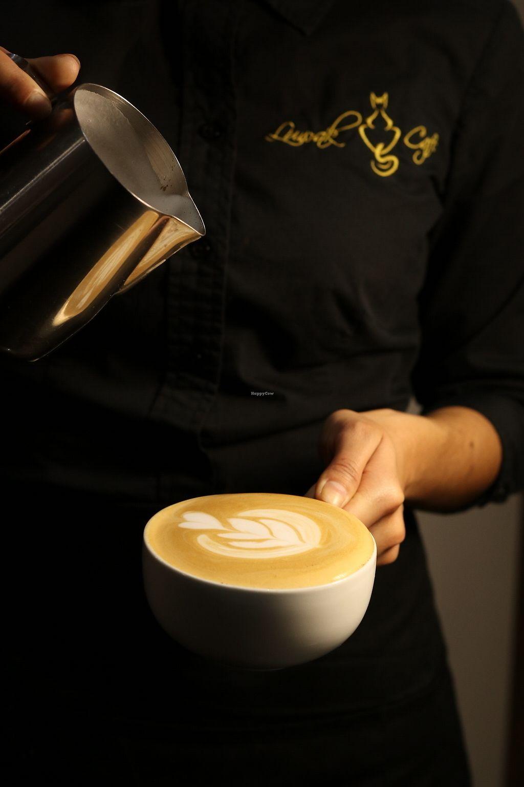 Luwak Cafe - Tijuana Restaurant - HappyCow