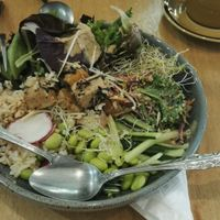 Poke bowl with tofu at Mama-P in Charlestown